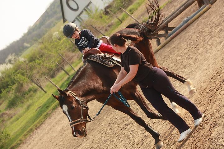 Nyim- i lovas köszhasznú egyesület